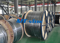 316L / 1.4404 Welded Coiled Seamless Stainless Steel Pipe For Multi - Core Tube সরবরাহকারী